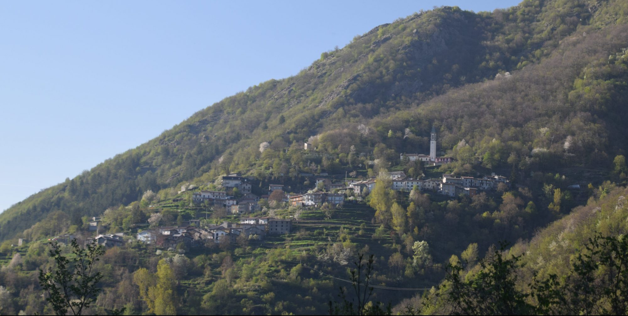www.castagnola.org